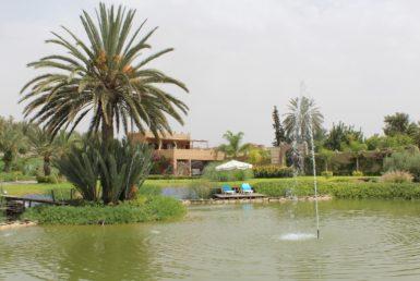 Magnifique Villa, ferme à vendre | Agence Immobilière Marrakech