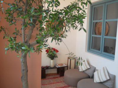 Tres bel appartement à l'hivernage (2)