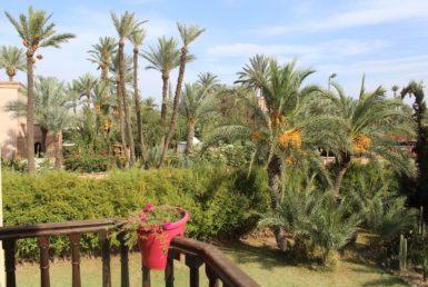 Location villa à la Palmeraie | Agence Immobilière Marrakech